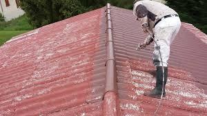 nettoyage et peinture toiture montpellier